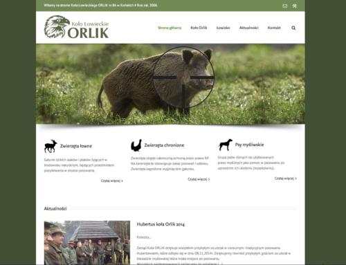 Strona internetowa Orlik